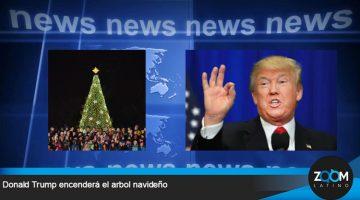 Donald Trump encenderá el árbol de navidad nacional