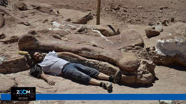 Encuentran restos del dinosaurio más grande de la historia en Argentina