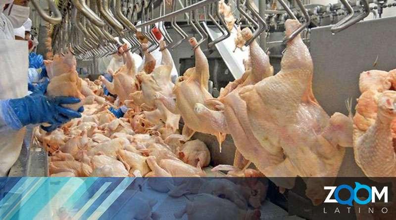 Presunta contaminación obliga a retirar más de 2 millones de libras en producto avícola de establecimientos