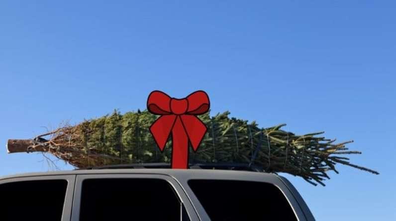 AAA da recomendaciones a usuarios para transportar árboles de navidad