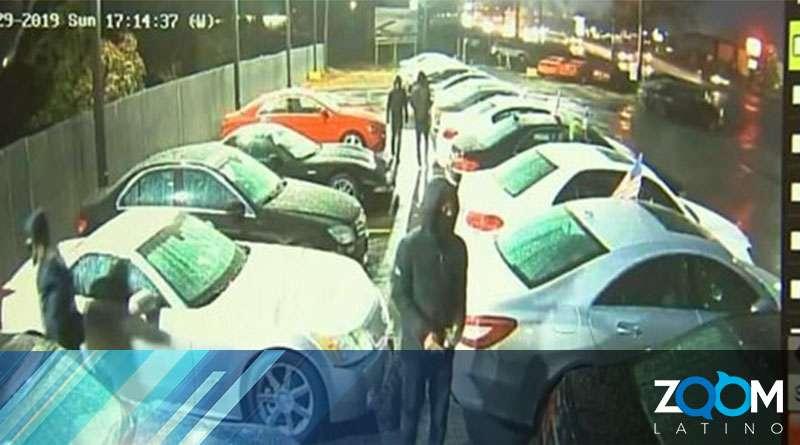 Policía investiga el robo de un concesionario de vehículos de lujo