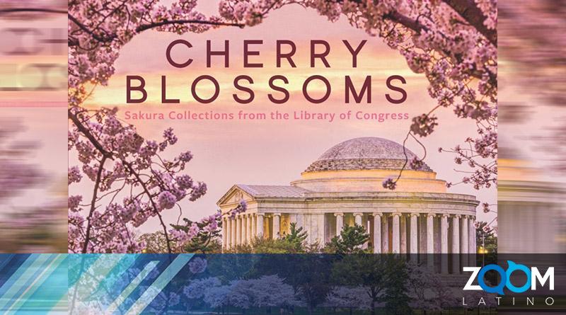 Publicado el nuevo libro en conmemoración a la flor de cerezo